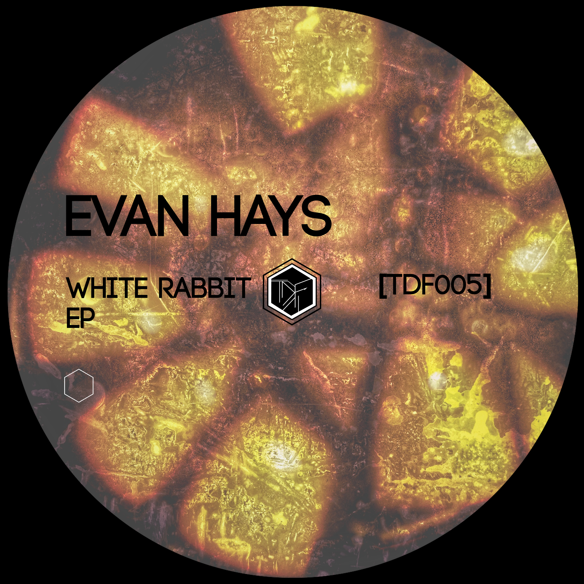 EP TDF005 - Evan Hays - TDF Records